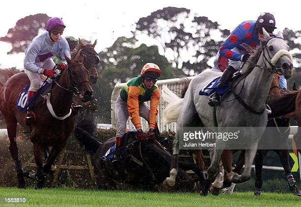 Mick Fitzgerald parts company with Cullin Caper at the 4TH hurdle during The Welcome Back Selling Hurdle Race run at Fontwell Park Mandatory Credit...