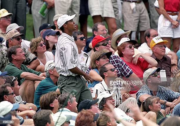 Tiger Woods watches his ball during The Sprint International at Castle Pines Golf Club in Castle Rock Colorado