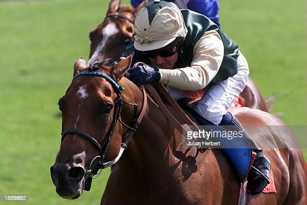 Mick Kinane and Prince Alex lead the field home at York to land The Motability rated Stakes run over 1 Mile and 2 Furlongs Mandatory Credit Julian...