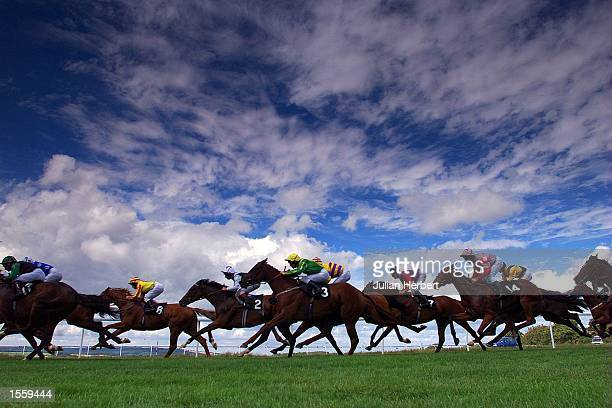 Runners enter the straight during The Moneyguru Stakes the first race on the opening day of the Glorious Goodwood Meeting which was won by Richard...