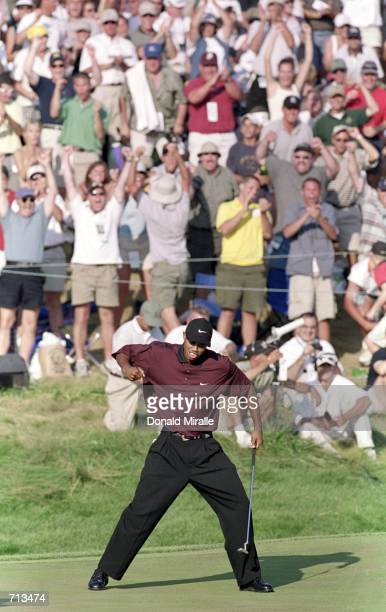 Tiger Woods celebrates making a difficult putt during the PGA Championship, part of the PGA Tour at the Valhalla Golf Club in Louisville,...