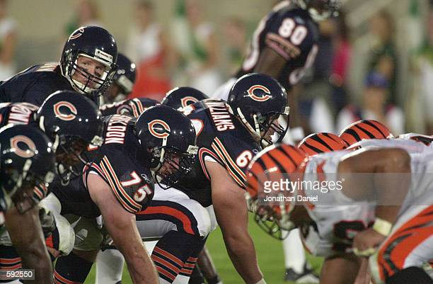 Cade McNown of the Chicago Bears takes the snap during the NFL preseason game against the Cincinnati Bengals at Soldier Field in Chicago IL The Bears...