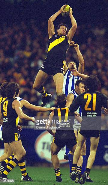 Matthew richardson of Richmond takes a spectacular mark during the AFL round 21 game between the Richmond Tigers and the Kangaroo's which was played...