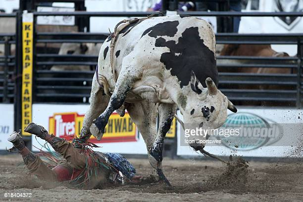 Jordan Wacey Spears escaped the stomping of PRCA rodeo bull BIG TIMER after scoring a 73 during the second round of the PRCA Pro Rodeo Extreme Bulls...