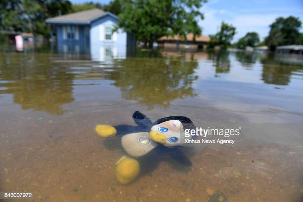 Aug 31 2017 A toy is seen in flood in Port Arthur Texas the United States Aug 31 2017 Nearly 40 people died or are feared dead in flooding or...