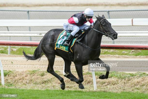 Augmentation ridden by Nathan Punch wins the bet365 Maiden Plate at Kilmore Racecourse on September 27 2020 in Kilmore Australia