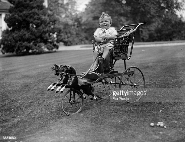Mrs Stone's baby is enjoying his ride in the garden in a 'fun' pram combining a basket push chair and a hobby horse
