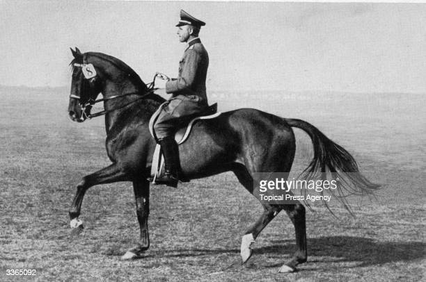 German Trainer Captain Viebig of the Hanover Cavalry School riding the East Prussian 'Gimpel' who won a gold medal in the 1936 Berlin Olympics Team...