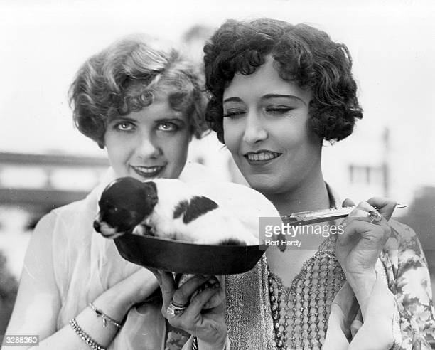 Mila Parely the film actress is pictured with her friend Anita Page during a visit to Southend with a little puppy dog sitting in a frying pan...