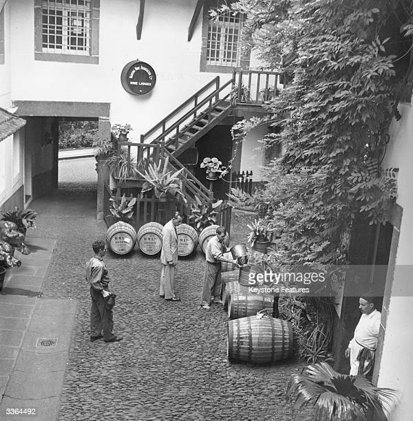 In the courtyard of a Madeira winery matured wine is poured into barrels for export These barrels are marked to go to Geneva in Switzerland