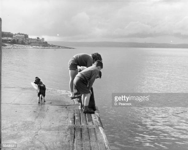 A group of children looking into the water at the harbour at Bangor in County Down