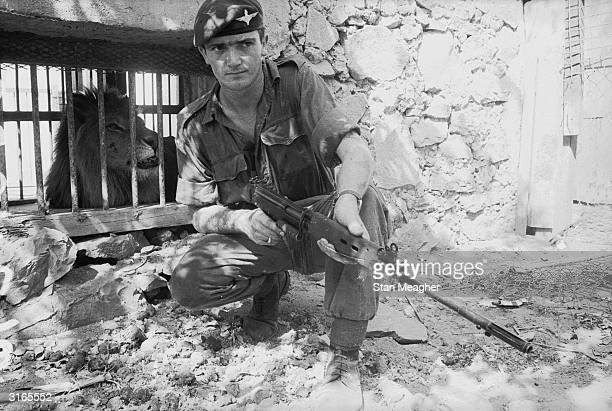 Lance Corporal Russell Johnson of the para regiment guards a terrorist escape route outside the lion's cage in Aden zoo