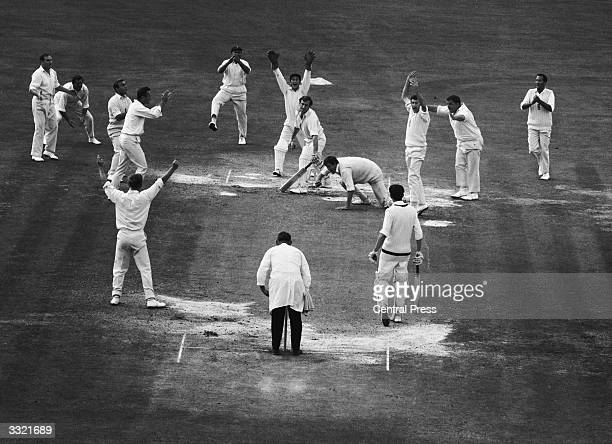 England fielders celebrate the fall of the last wicket in the fifth and final test match against Australia at the Oval England won by 226 runs