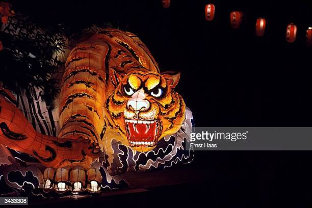 An illuminated papiermache tiger in the parade during the Nebuta festival held in Aomori city at the beginning of August The festival allegedly with...