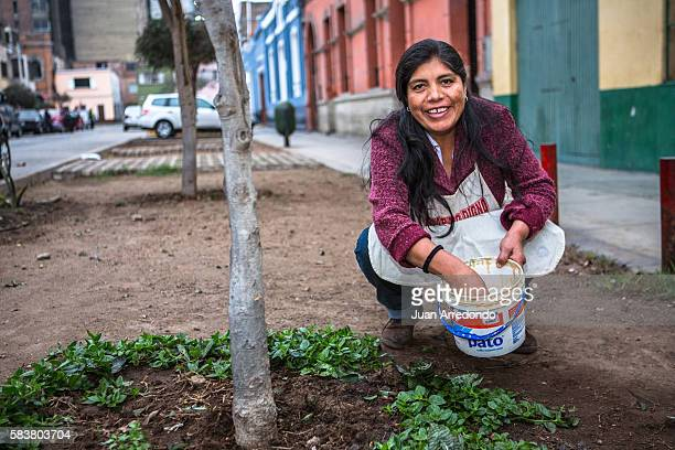 August 2 2015 LIMA PERU Ines Meza Cuno is a domestic worker and is a Member of the SINTRAHOGARP SINTRAHOGARP is one of several organizations of...