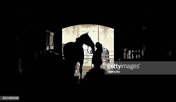 7 August 2015 A Horse and a handler in the stables during the Discover Ireland Dublin Horse Show 2015 RDS Ballsbridge Dublin Picture credit Cody...