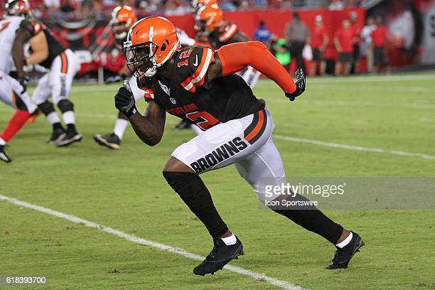 Cleveland Browns wide receiver Josh Gordon in action during the preseason NFL game between the Cleveland Browns and Tampa Bay Buccaneers at Raymond...