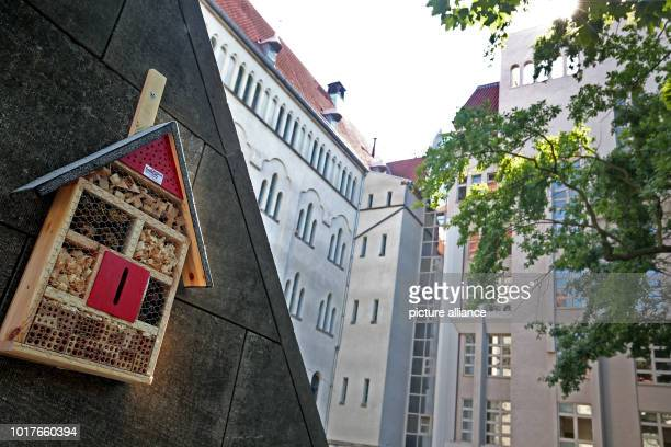 An insect hotel hanging on a facade in the courtyard of the district court in the district of Wedding The miniature houses were built by prisoners in...