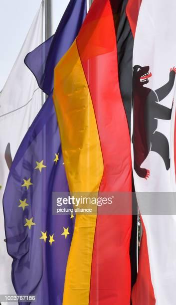 Flags of the EU Germany and Berlin Photo Jens Kalaene/dpa