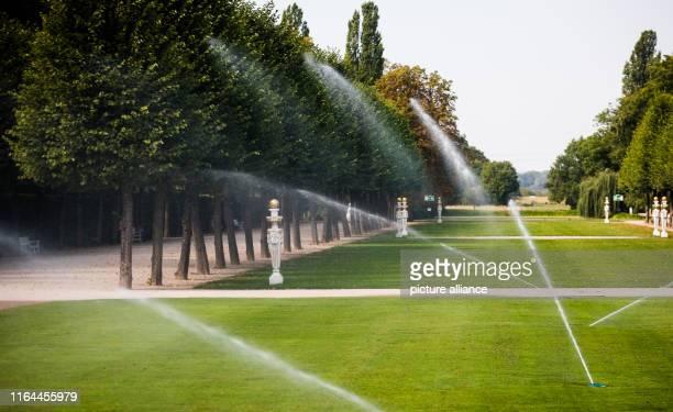 28 August 2019 BadenWuerttemberg Schwetzingen Green spaces in the Schwetzinger Schlossgarten are watered with water Rising temperatures and less...