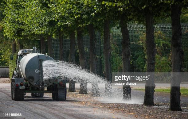 28 August 2019 BadenWuerttemberg Schwetzingen Trees are watered with water in the Schwetzinger Schlossgarten Rising temperatures and less...