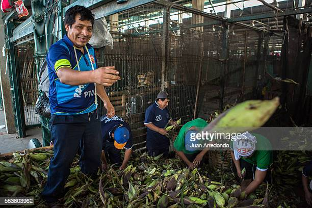 August 3 2015 LIMA PERU Encalada Huamani is a Market porter of Corn at the Mercado Mayorista de Santa Anita in Lima and member of SEGCHGMML of...