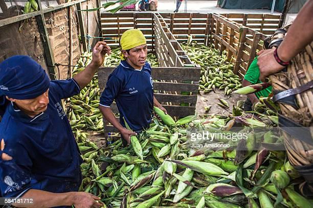 August 3 2015 LIMA PERU Jose Echaccaya is a Market porter of Corn at the Mercado Mayorista de Santa Anita in Lima and member of SEGCHGMML of...