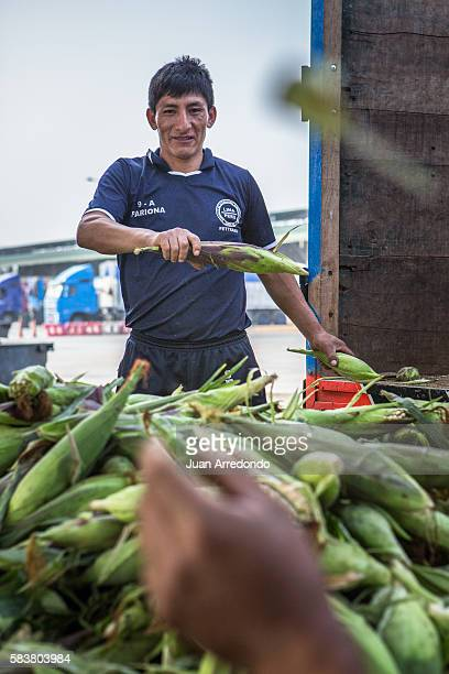 August 3 2015 LIMA PERU Rafael Pariona Martin is a Market porter of Corn at the Mercado Mayorista de Santa Anita in Lima and member of SEGCHGMML of...