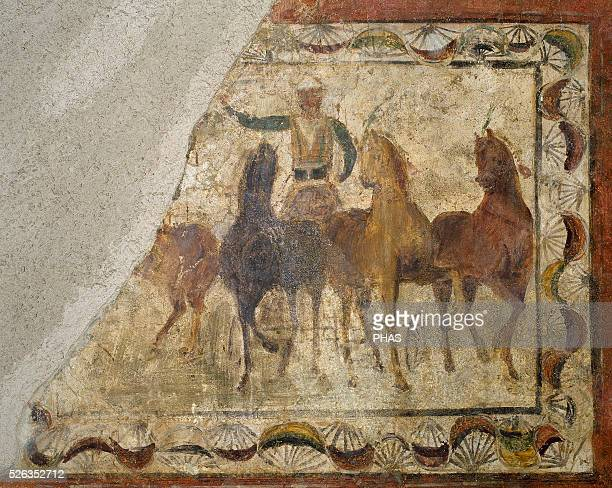 Auriga winner on quadriga Roman painting Domus 4th C Merida National Museum of Roman art Merida Spain