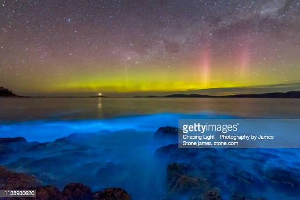 Aurora Australis or Southern Lights in the sky over spectacular blue bioluminescence in the water.