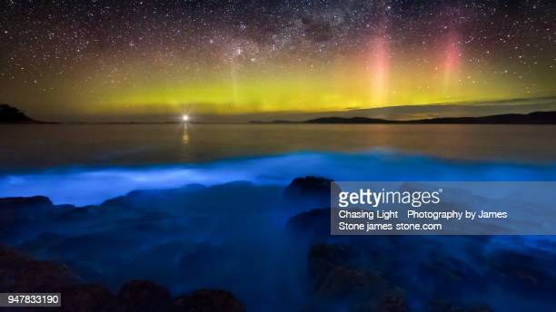 aurora australis over blue bioluminescence - aurora australis stock pictures, royalty-free photos & images