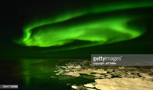 aurora australis reflected in the southern ocean, antarctica. - pack ice stock pictures, royalty-free photos & images