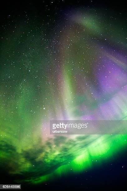 aurora borealis, iceland - husavik stock photos and pictures