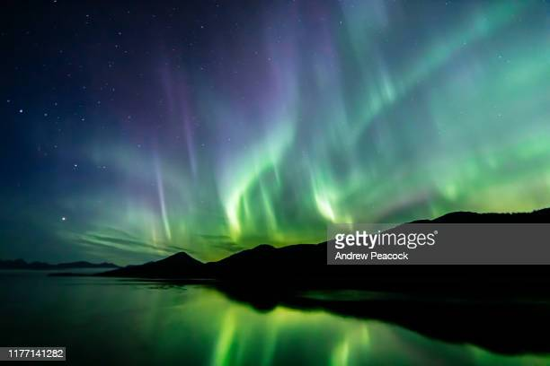 aurora borealis - northern lights - southeast alaska - aurora borealis stock pictures, royalty-free photos & images