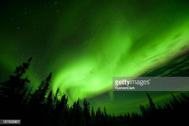 Aurora Borealis or Northern Lights near Yellowknife.