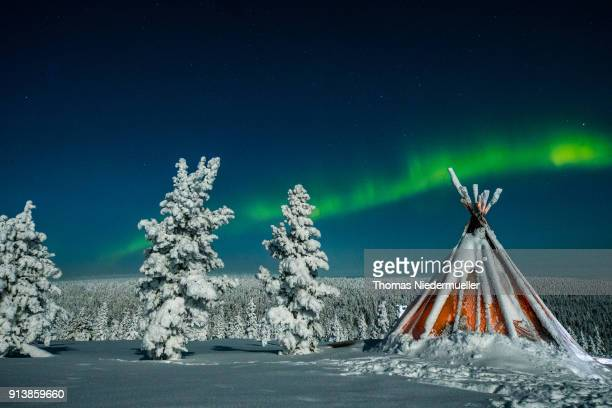 Aurora Borealis or Northern Lights shine over a forest on February 012018 at Saariselka Finland