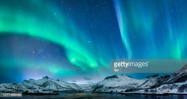aurora borealis over in the dark night sky over the snowy mountains in the lofoten - north stock pictures, royalty-free photos & images