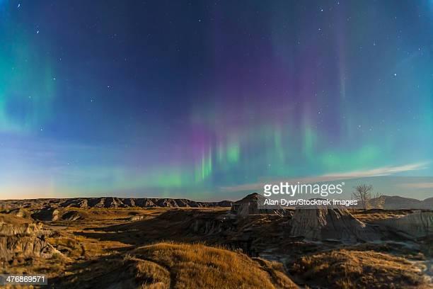 Aurora borealis over the badlands of Dinosaur Provincial Park, Canada.