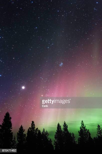 Aurora Borealis, planet Jupiter and The Pleiades above boreal forest