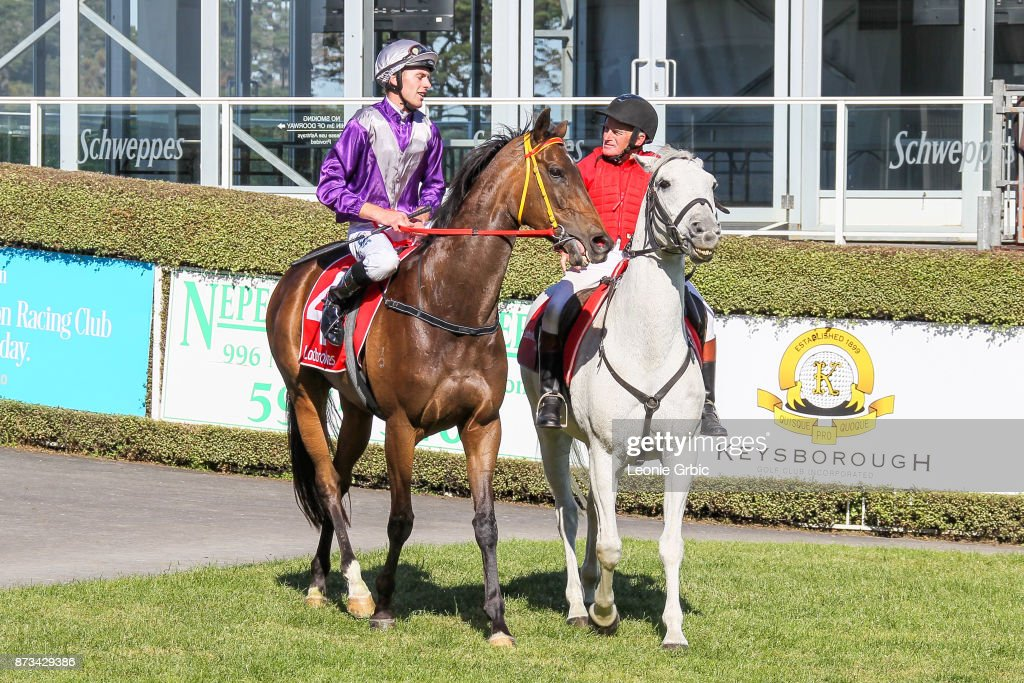 Aurora Miss ridden by Clayton Douglas returns after winning the Mornington Car & Tyre Services Handicap at Mornington Racecourse on November 13, 2017 in Mornington, Australia.