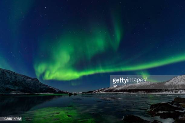 aurora northern polar light in night sky over northern norway - snow scene stock photos and pictures