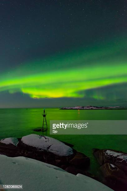 "aurora northern polar light in night sky over northern norway - ""sjoerd van der wal"" or ""sjo"" stock pictures, royalty-free photos & images"
