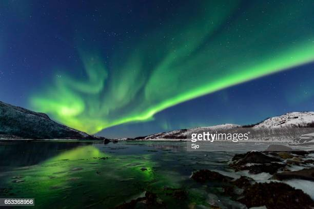 aurora northern polar light in night sky over northern norway - aurora borealis stock pictures, royalty-free photos & images