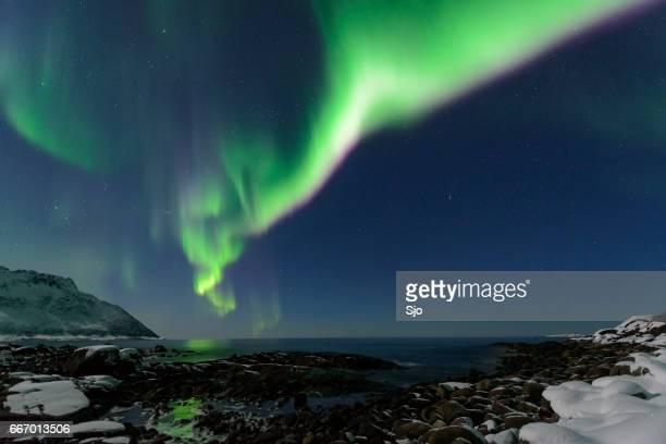 Aurora Northern Polar light in night sky over Northern Norway