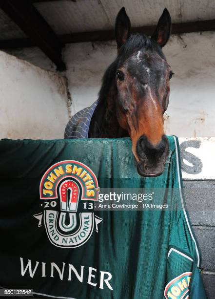 Auroras Encore in his stable during the winners photocall at Craiglands Farm, Bingley.