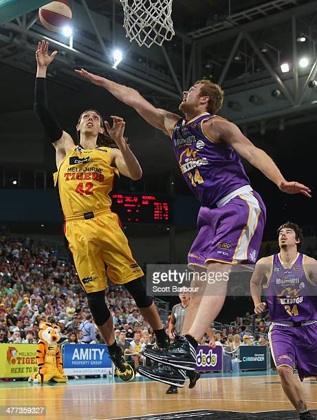 Auryn MacMillan of the Tigers shoots the ball as Tom Garlepp of the Kings defends during the round 21 NBL match between the Melbourne Tigers and the...