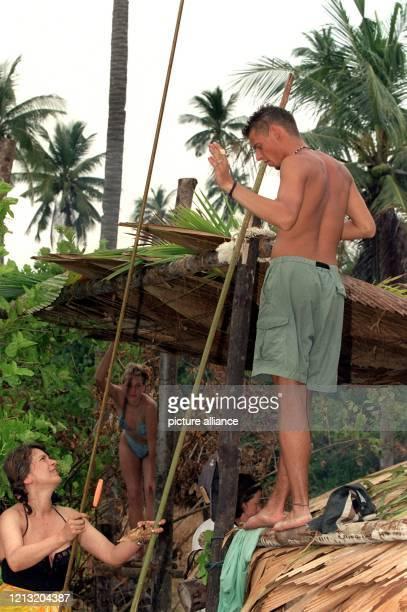 """Aus Palmblättern, die auf ein Holzgestell gelegt werden, bauen Stefanie und Tjalf, Teilnehmer der SAT.1-Abenteuer-Show """"Das Inselduell"""", am 3.6.2000..."""