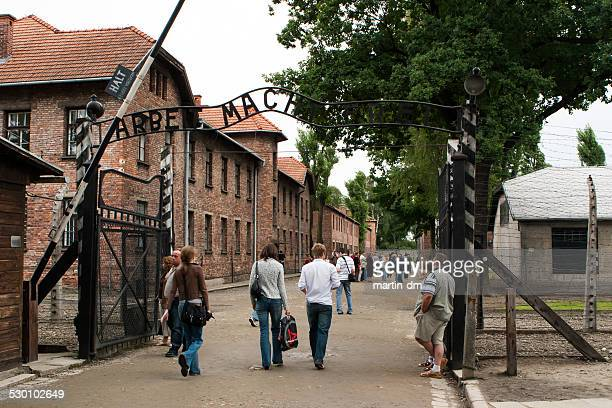 auschwitz camp - birkenau stock pictures, royalty-free photos & images