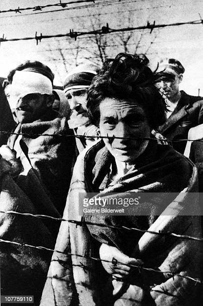 Auschwitz Concentration Camp A few of the survivors of Auschwitz I are standing near the fence during the arrival of the Red Army 27th January 1945...
