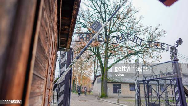 auschwitz concentration camp - holocaust stock pictures, royalty-free photos & images